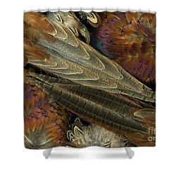 Featherdance Shower Curtain by Christian Slanec