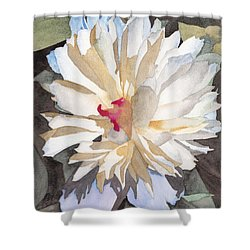 Feathery Flower Shower Curtain by Ken Powers