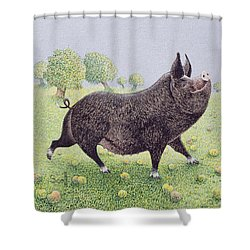 Feeling Great  Shower Curtain by Pat Scott