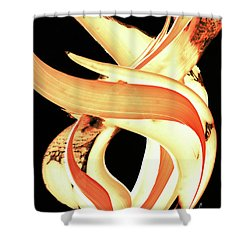 Firewater 3 Shower Curtain by Sharon Cummings