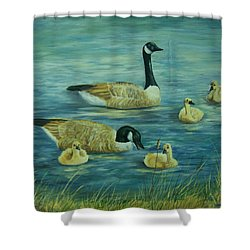 First Lesson Shower Curtain by Wanda Dansereau