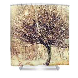 First Snow. Snow Flakes Shower Curtain by Jenny Rainbow