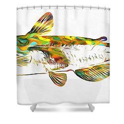Fish Art Catfish Shower Curtain by Dan Sproul