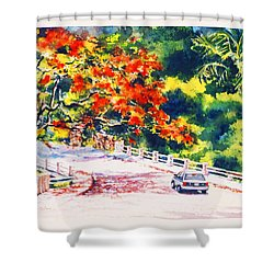 Flamboyant At Crashboat Beach Shower Curtain by Estela Robles