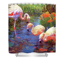 Flamingos, Tangerine Dream Shower Curtain by Jane Small