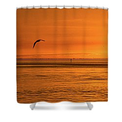 Flight At Sunset Shower Curtain by Christopher Holmes