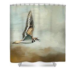 Flight Of The Killdeer Shower Curtain by Jai Johnson