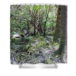 Florida Landscape - Lithia Springs Shower Curtain by Carol Groenen
