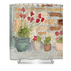 Flower Pots Shower Curtain by Ken Powers