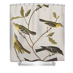 Fly Catchers Shower Curtain by John James Audubon
