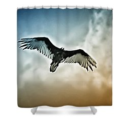 Flying Falcon Shower Curtain by Bill Cannon