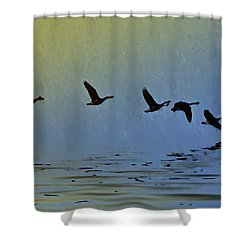 Flying Low Shower Curtain by Bill Cannon