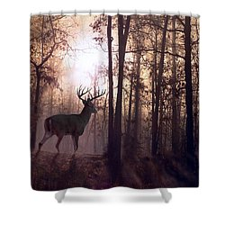 Foggy Morning In Missouri Shower Curtain by Bill Stephens