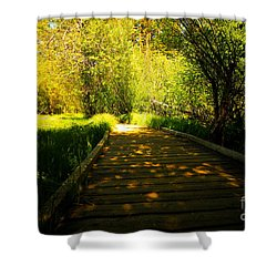 Follow The Path Shower Curtain by Cheryl Young