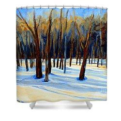 Footprints  Shower Curtain by Carole Spandau