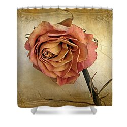 For You Shower Curtain by Jessica Jenney