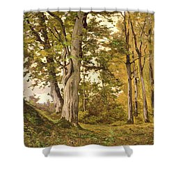 Forest At Fontainebleau Shower Curtain by Henri-Joseph Harpignies