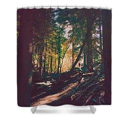 Forest Shower Curtain by Brennan Gallegos