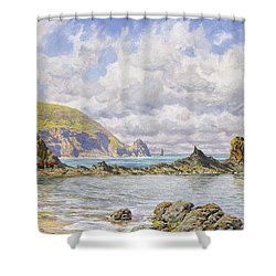 Forest Cove Shower Curtain by John Brett