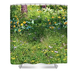 Forest Flowers Landscape Shower Curtain by Carol Groenen