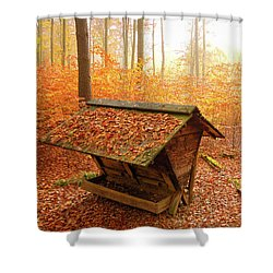 Forest In Autumn With Feed Rack Shower Curtain by Matthias Hauser