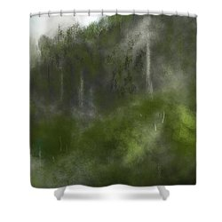 Forest Landscape 10-31-09 Shower Curtain by David Lane