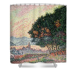 Forest Near St Tropez Shower Curtain by Paul Signac