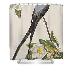 Fork-tailed Flycatcher  Shower Curtain by John James Audubon