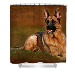Forrest The German Shepherd Shower Curtain by Angie Tirado