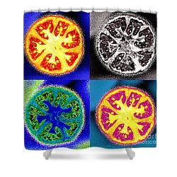 Four Tomatoes Shower Curtain by Nancy Mueller