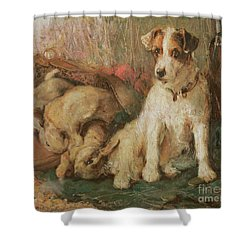 Fox Terrier With The Day's Bag Shower Curtain by English School