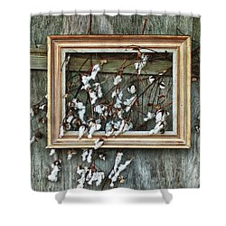 Framed Cotton Shower Curtain by Michael Thomas