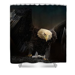 Fresh Catch Shower Curtain by Jai Johnson