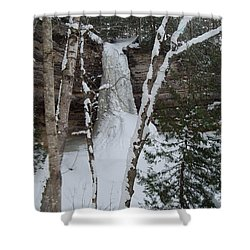 Frozen Shower Curtain by Michael Peychich