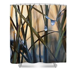 Frozen Raindrops Shower Curtain by Sharon Foster