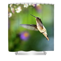 Garden Hummingbird Shower Curtain by Christina Rollo