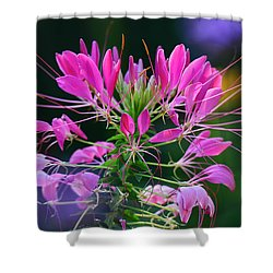 Shower Curtain featuring the photograph Garden Magic by Rodney Campbell