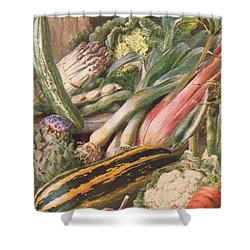 Garden Vegetables Shower Curtain by Louis Fairfax Muckley