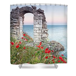 Gate In The Poppies Shower Curtain by Evgeni Dinev