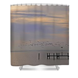 Geese Over The Chesapeake Shower Curtain by Bill Cannon