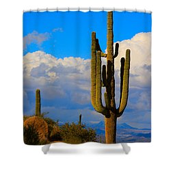 Giant Saguaro In The Southwest Desert  Shower Curtain by James BO  Insogna