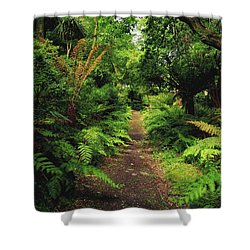 Glanleam, Co Kerry, Ireland Pathway Shower Curtain by The Irish Image Collection
