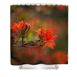 Glorious Blooms Shower Curtain by Mike Reid