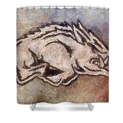 Go Hogs Go  Shower Curtain by Dawn Bearden