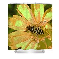 Golden Bee Shower Curtain by Karol Livote