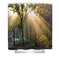 Golden Rays Shower Curtain by Kristin Elmquist