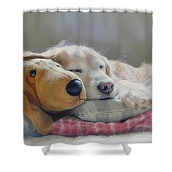 Golden Retriever Dog Sleeping With My Friend Shower Curtain by Jennie Marie Schell
