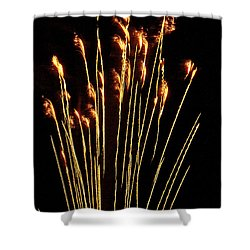 Goldenrod Shower Curtain by Phill Doherty