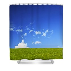 Grass Cloud Sky Shower Curtain by Brandon Tabiolo - Printscapes