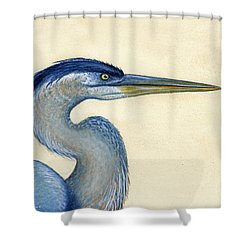Great Blue Heron Portrait Shower Curtain by Charles Harden